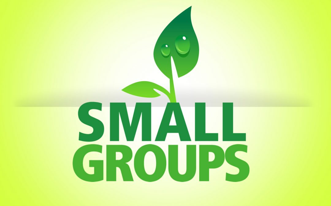 Small group discussion: ground rules